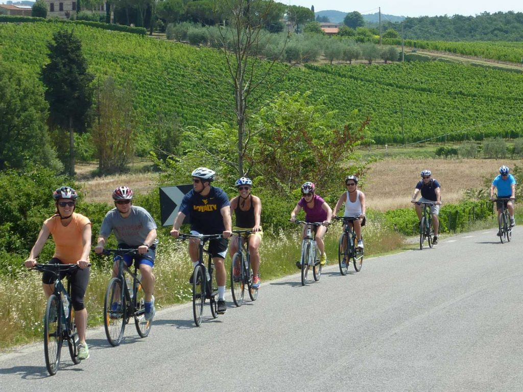 Chianti Bike Tasting Tour includes 3 wine tastings