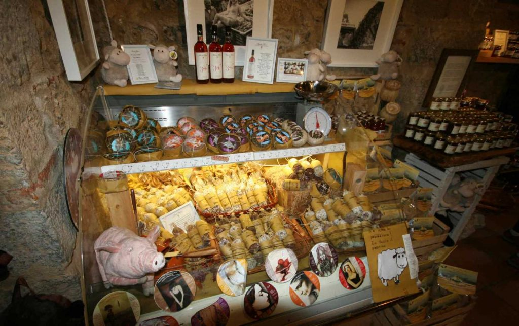Wine Tasting with Bike in Florence & Tuscany Tours