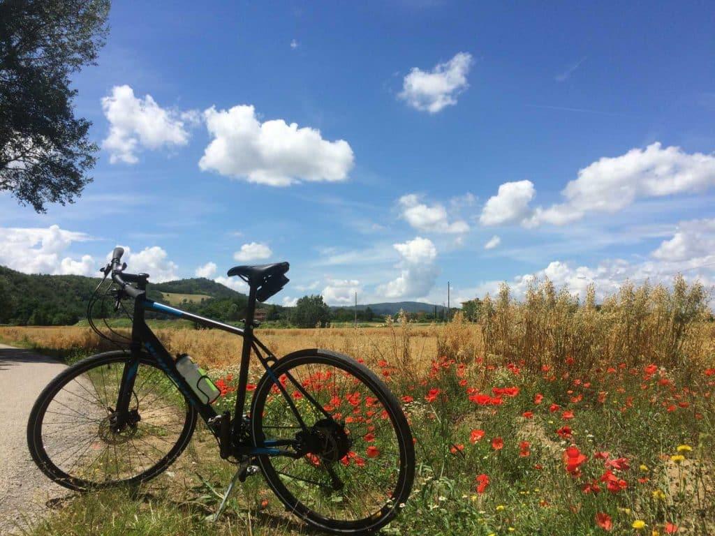 Biking on Vacation: Safety Tips