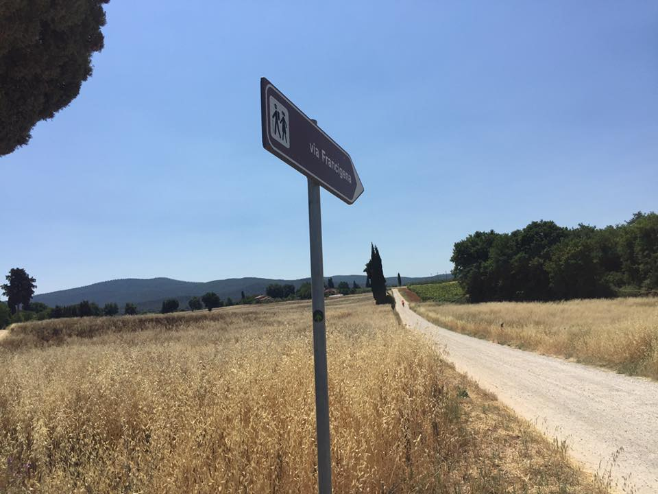 Traveling the white roads with Bike in Florence & Tuscany