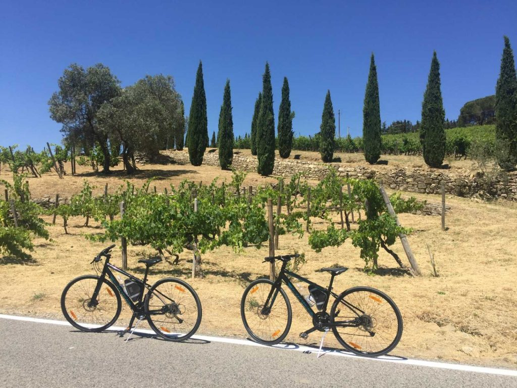 Private Bike Tour in Tuscany: Bike Florence & Tuscany