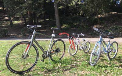Q & A  Biking in Tuscany: 7 Answers